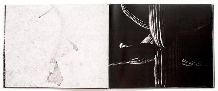 Michael_Lundgren-Transfigurations_3