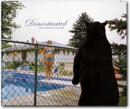 stein-domesticated-cover
