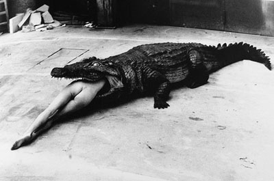 helmut_newton_alligator_still