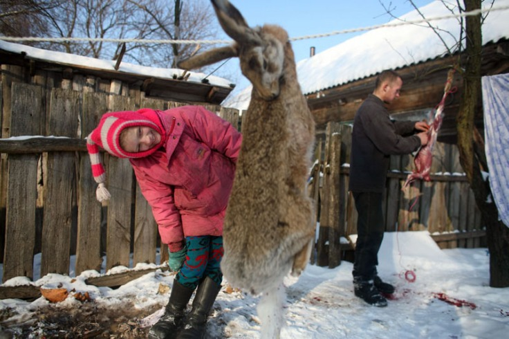 weber-child-dead-rabbit1