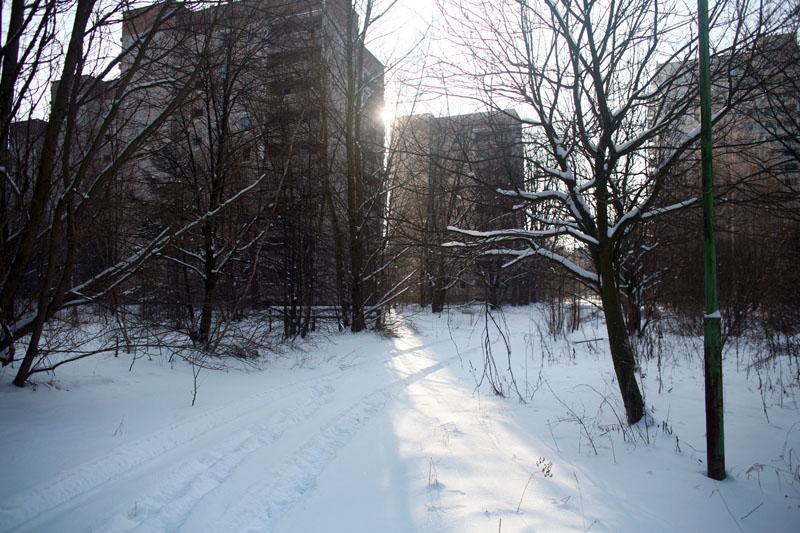 weber-urban-landscape