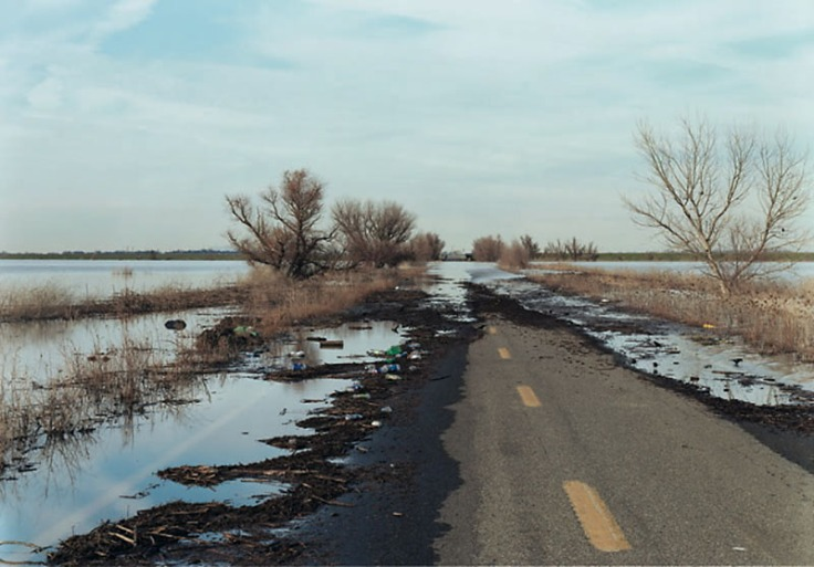 Felzmann_flooded_road_landscape_126