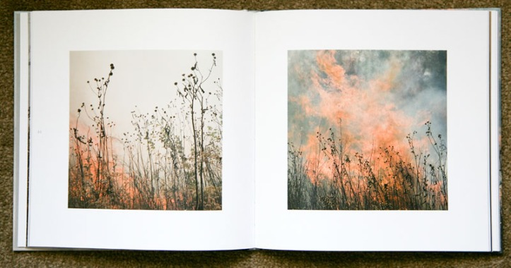 Jane_Fulton_Alt-The_Burn_2