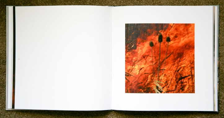 Jane_Fulton_Alt-The_Burn_3
