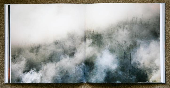 Jane_Fulton_Alt-The_Burn_5