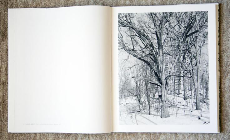 Mitch_Epstein-New_York_Arbor_1
