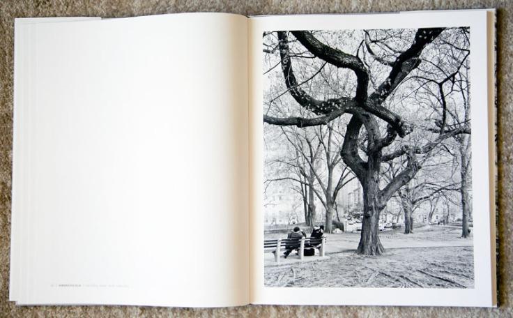 Mitch_Epstein-New_York_Arbor_3
