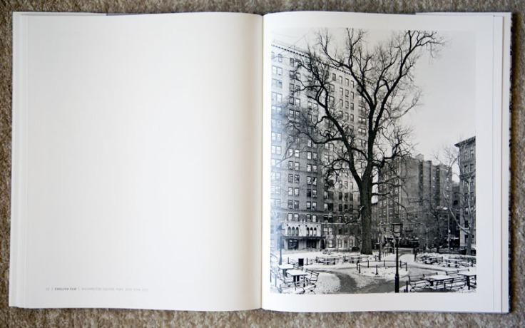 Mitch_Epstein-New_York_Arbor_7