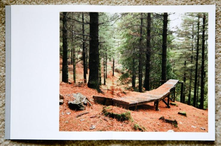 Paul_Gaffney-We_Make_the_Path_by_Walking_3
