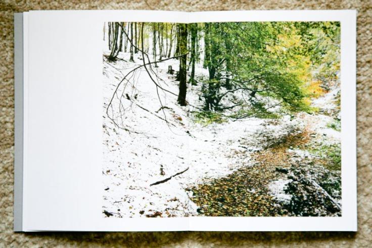 Paul_Gaffney-We_Make_the_Path_by_Walking_6