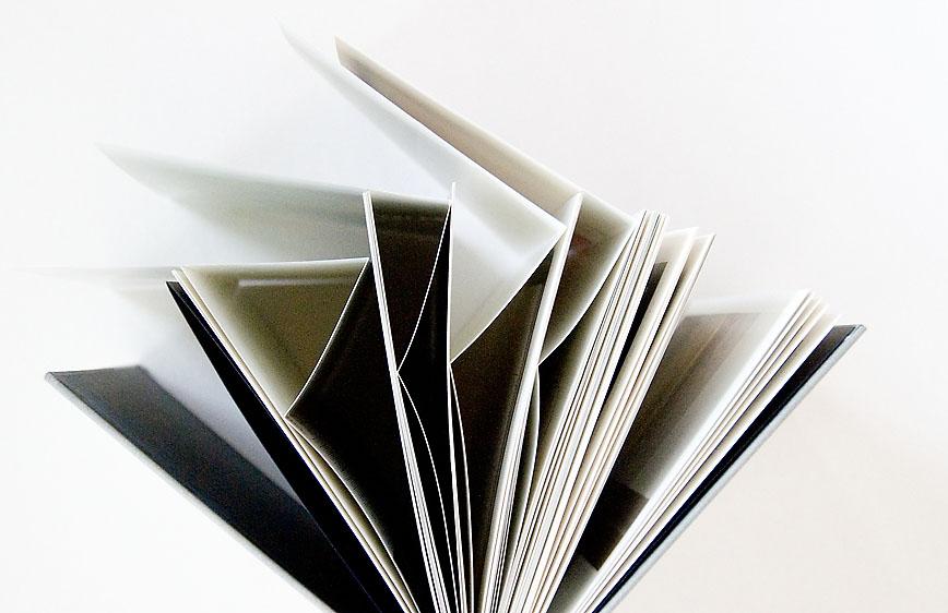 laia_abril the_epilogue_4_tri fold_pages