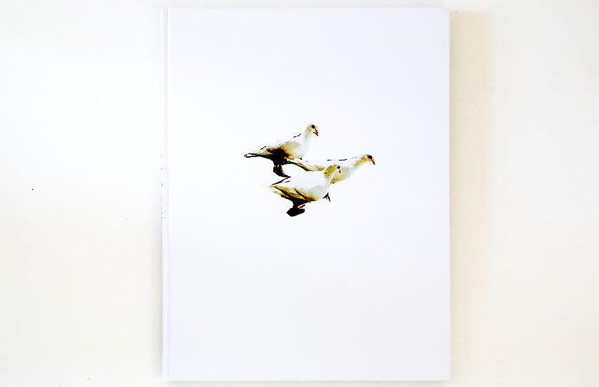 Carolyn_Drake–Wild_Pigeon_cover