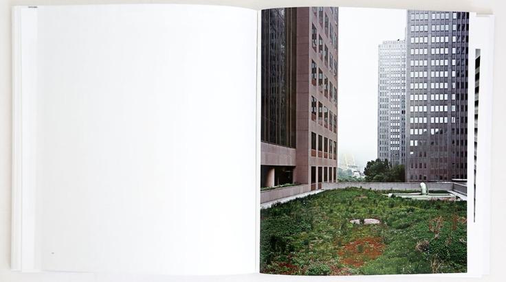 Brad_Temkin_Rooftop_1