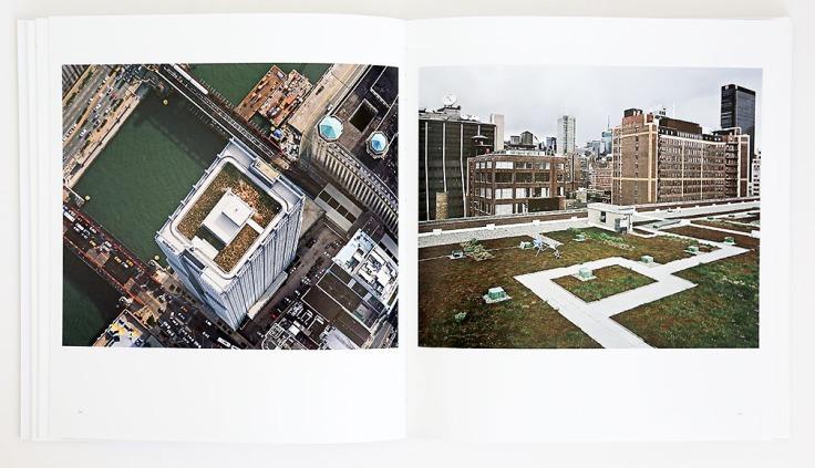 Brad_Temkin_Rooftop_2