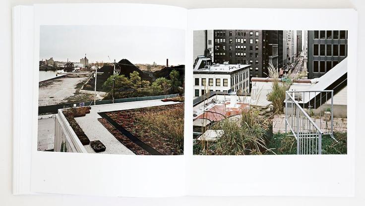 Brad_Temkin_Rooftop_7