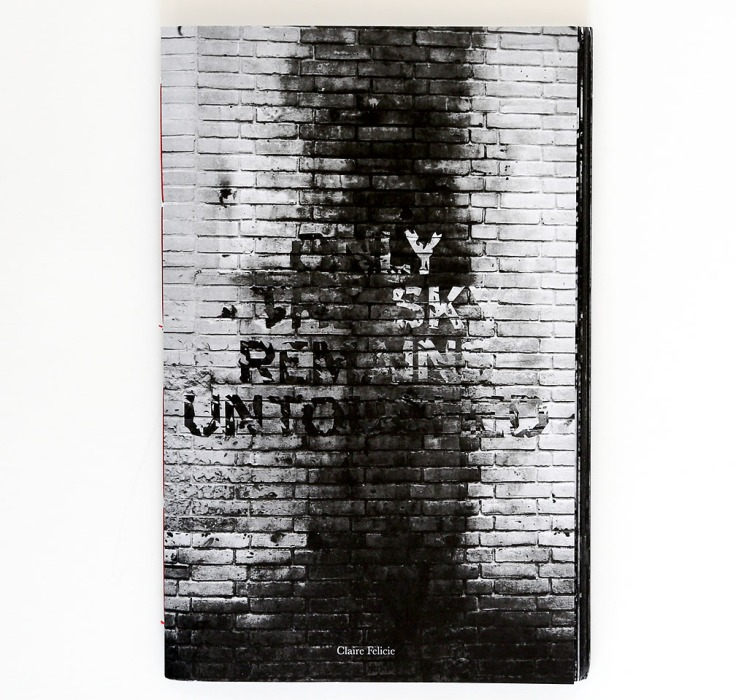 claire_felicie-only_the_sky_remains_untouched_cover