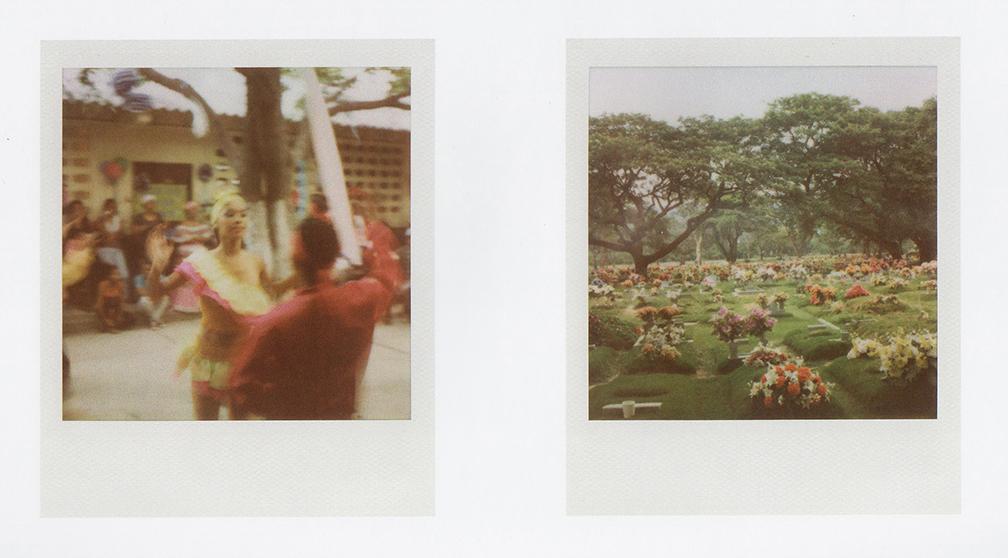 08-papaya.jpg