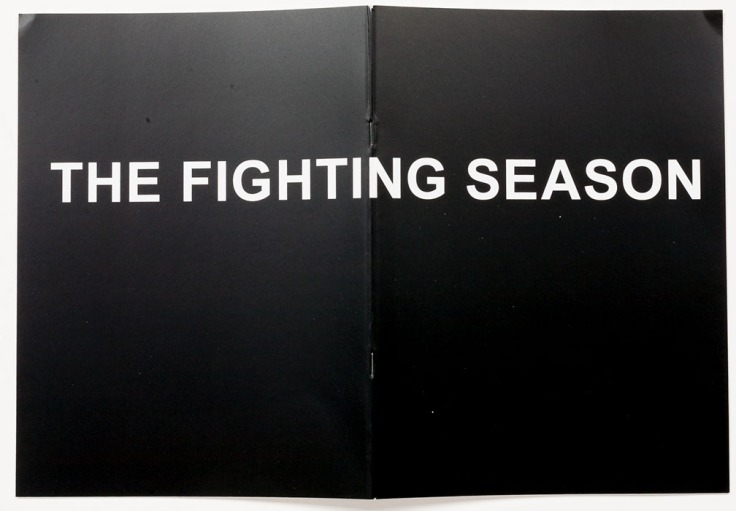 Louie_Palu-The_Fighting_Season_zine_cover