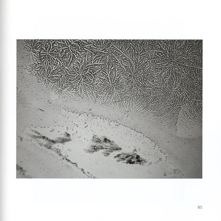 06-Fisher.jpg