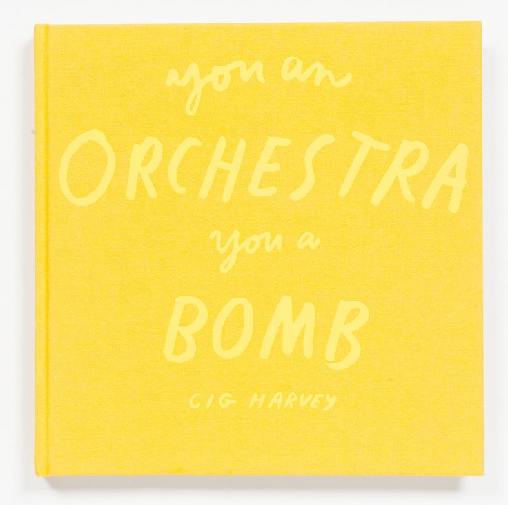 Cig Harvey-You_an_Orchestra _You_a_Bomb_cover