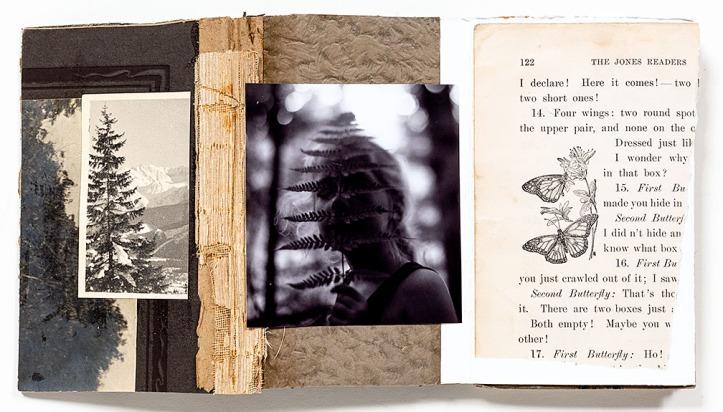 Melissa_Lazuka-Song_of_the_Cicadas_2