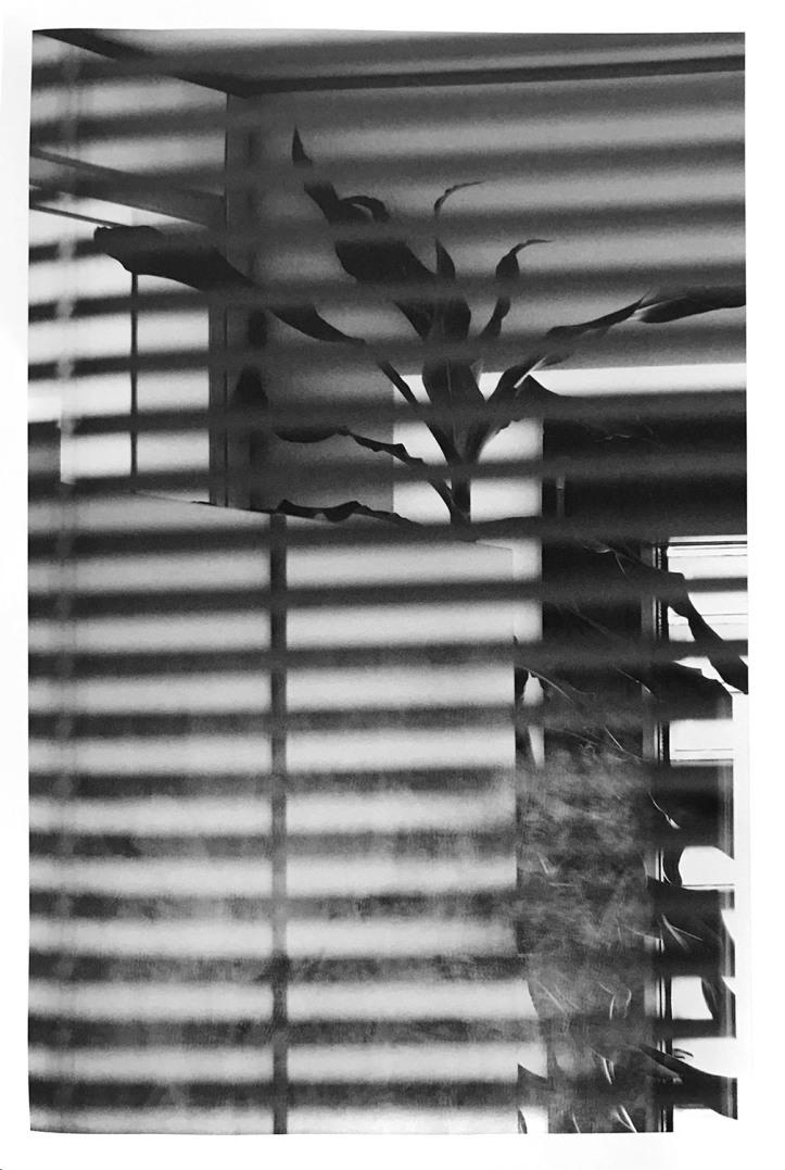 03-groneberg .jpg