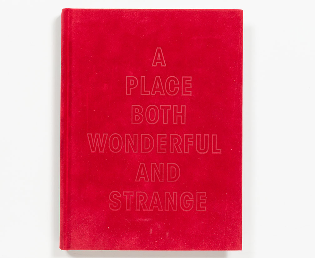 A_Place_Both_Wonderful_and_Strange_cover