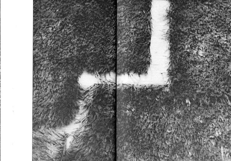07-steinmetz.jpg