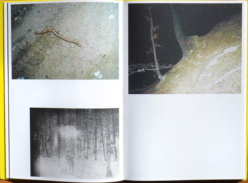 02-Brugner-Arsenic.jpg