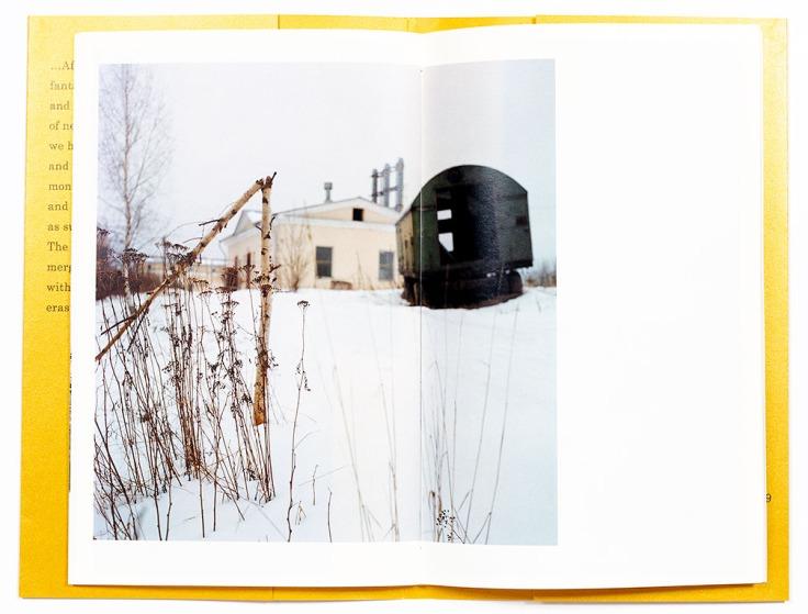 Ekaterina_Vasilyeva-Road_To_Petergof_7