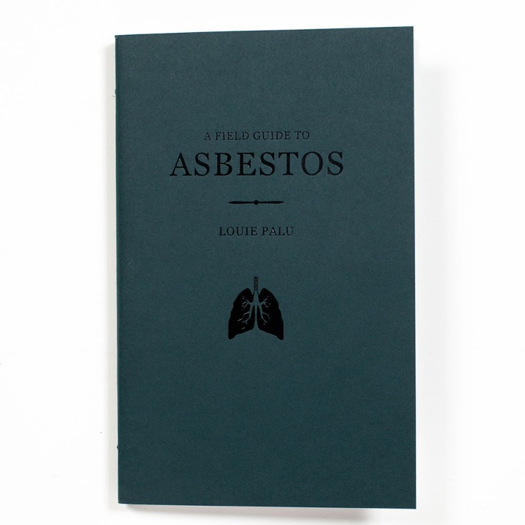 Louie_Palu_A-Field-Guide-to-Asbestos_cover