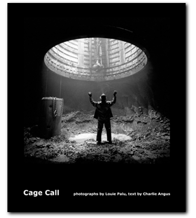 Palu-Cage-Call-Cover