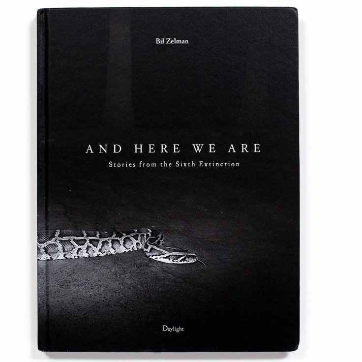 Bil_Zelman-And_Here_We_Are_cover