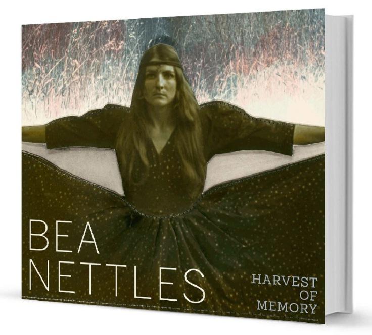 000-Nettles.jpg