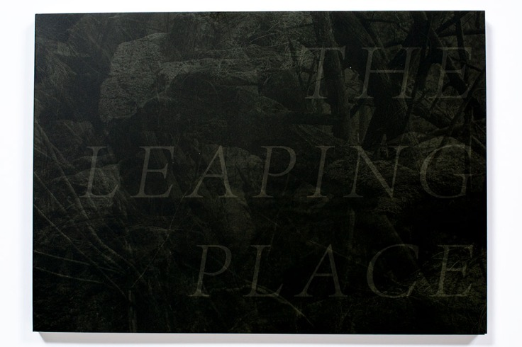Matt_Shallenberger_The_Leaping_Place_cover