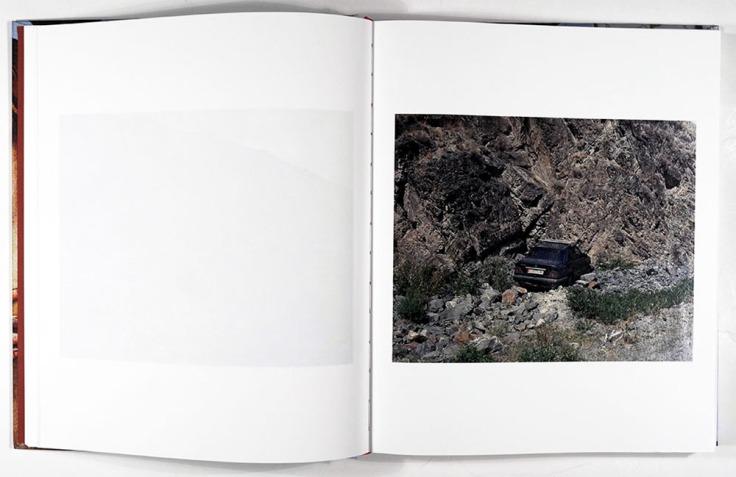 Sebastian_Rogowski-Suicidal_Birds_3