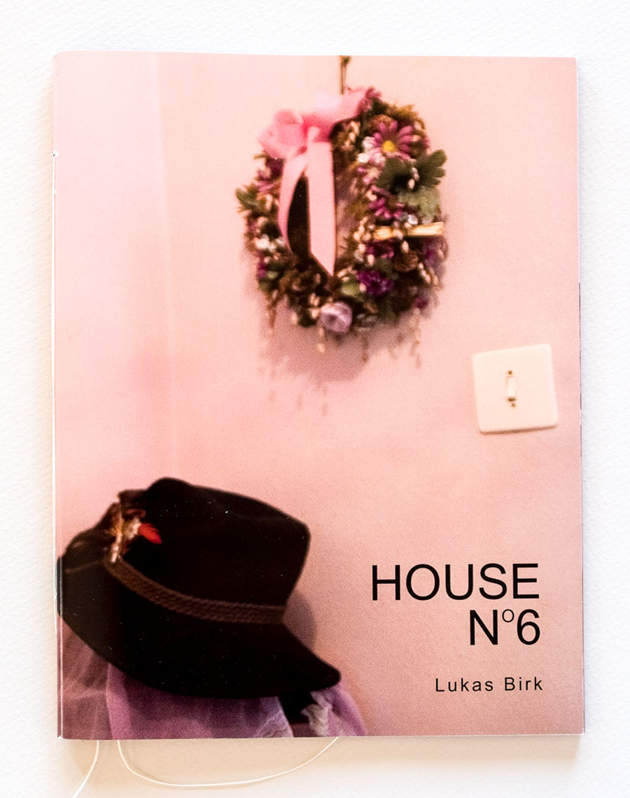 Lukas_Birk-House_No_6_cover-1