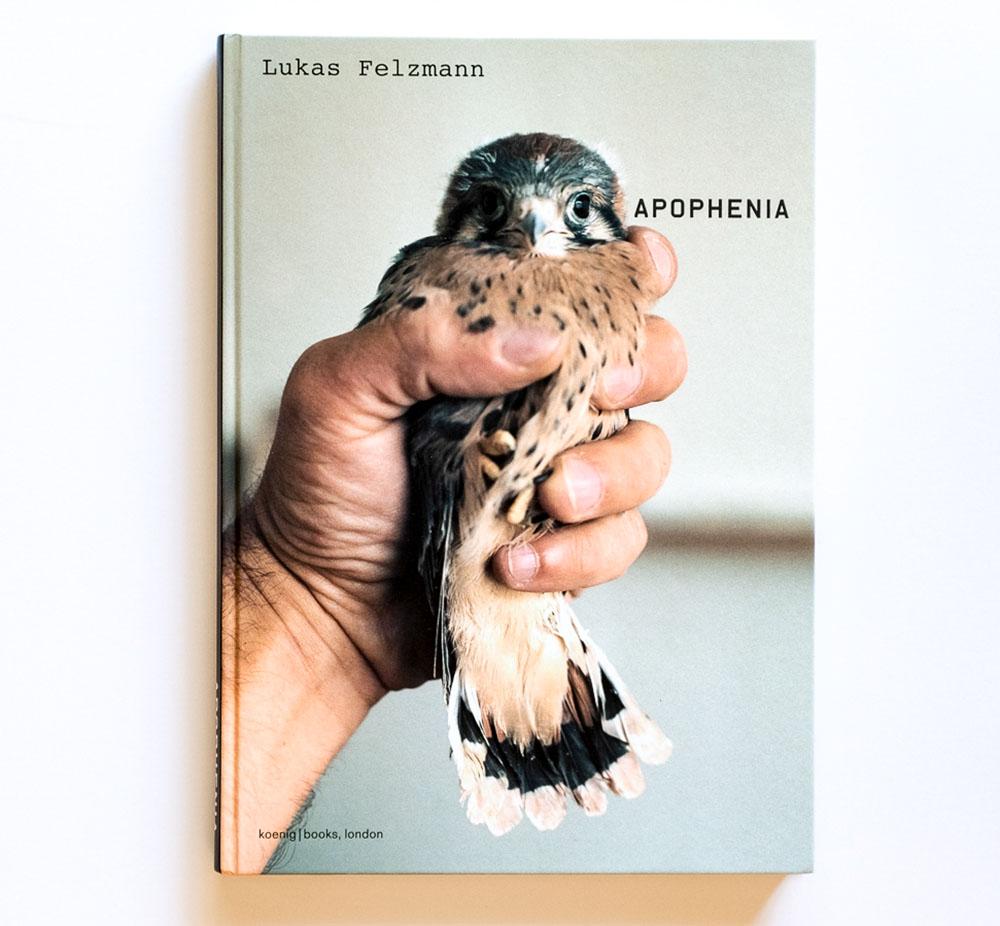 Lukas_Felzmann-Apophenia_cover