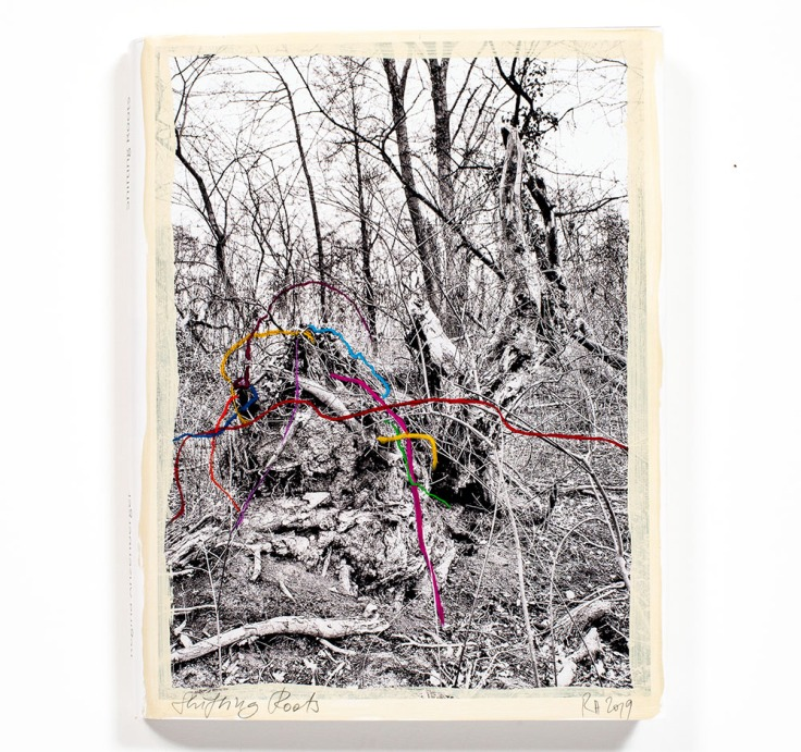 Regina_Anzenberger-Shifting_Roots_cover